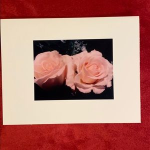 8 Hand-Made Floral/Plant Photo Blank Cards